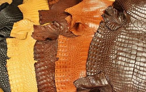 cách nhận biết da cá sấu thật