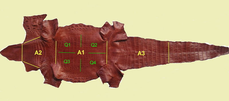 phân biệt da cá sấu thật và giả