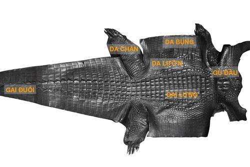 cách nhận biết da cá sấu thật giả